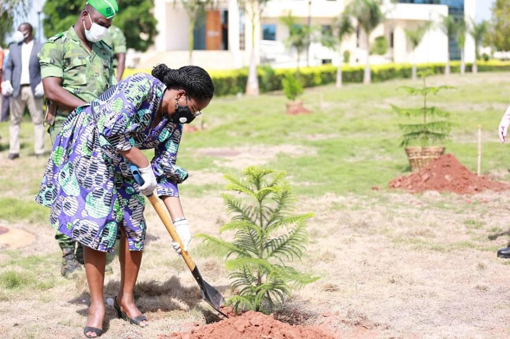Journée de l'arbre à la Présidence de la République Togolaise