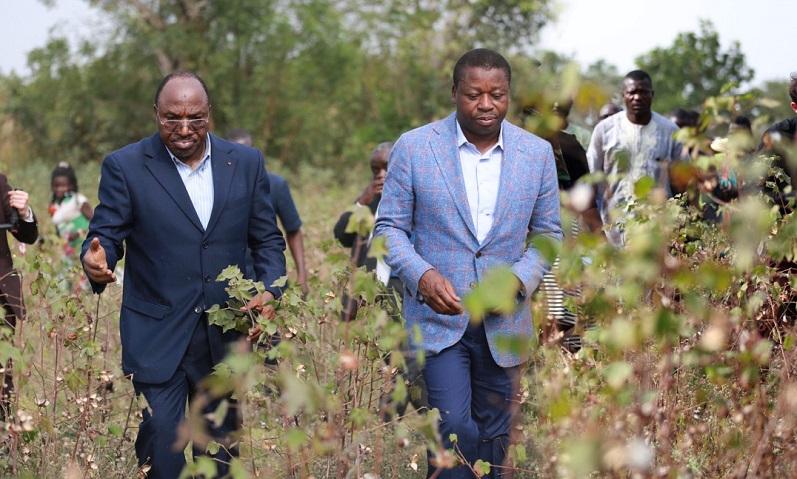 Le Président de la République SEM Faure Essozimna Gnassingbé s'est investi dans la création du MIFA pour faciliter l'accès des exploitants d'unités agricoles au financement avec un taux d'intérêt réduit et plus de garantie aux crédits