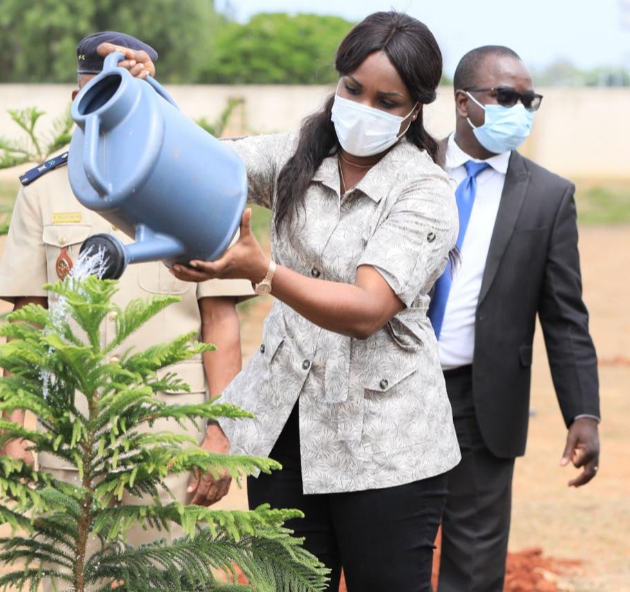 Ce 1er juin 2021, les Togolais ont une fois encore démontré leur engagement à préserver l'environnement, en répondant à l'appel du gouvernement qui, cette année, a lancé une campagne nationale de reboisement. Au palais de la Présidence de la République, la Journée nationale de l'arbre a été observée par plusieurs collaborateurs du Chef de l'Etat notamment les Ministres conseillers et les responsables des services rattachés ainsi que le personnel.